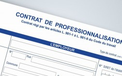 alternance-le-contrat-de-professionnalisation-article