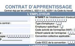 alternance-le-contrat-de-professionnalisation-article