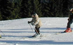 moniteur-ski-article
