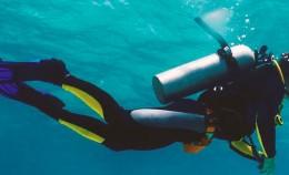 plongeur-article
