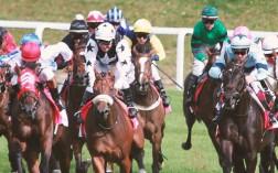 lad-jockey-article