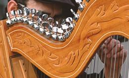 harpiste-article