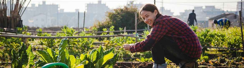 Agriculteur urbain
